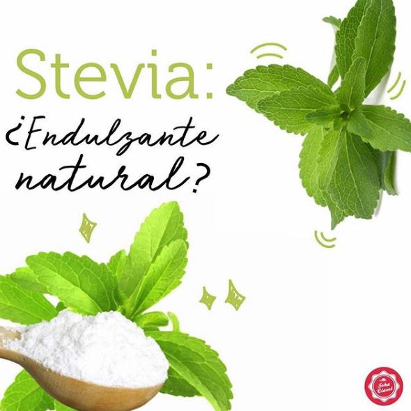 stevia edulcorante natural